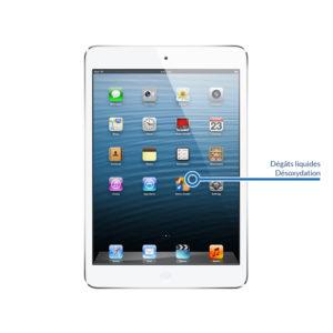 desox ipadmini1 300x300 - Désoxydation pour iPad Mini